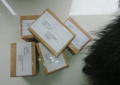 leaflet-pic-l2c-4